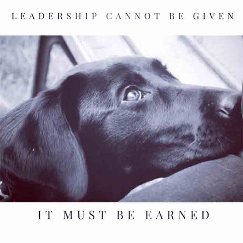Leadership cannot be given - it must be earned