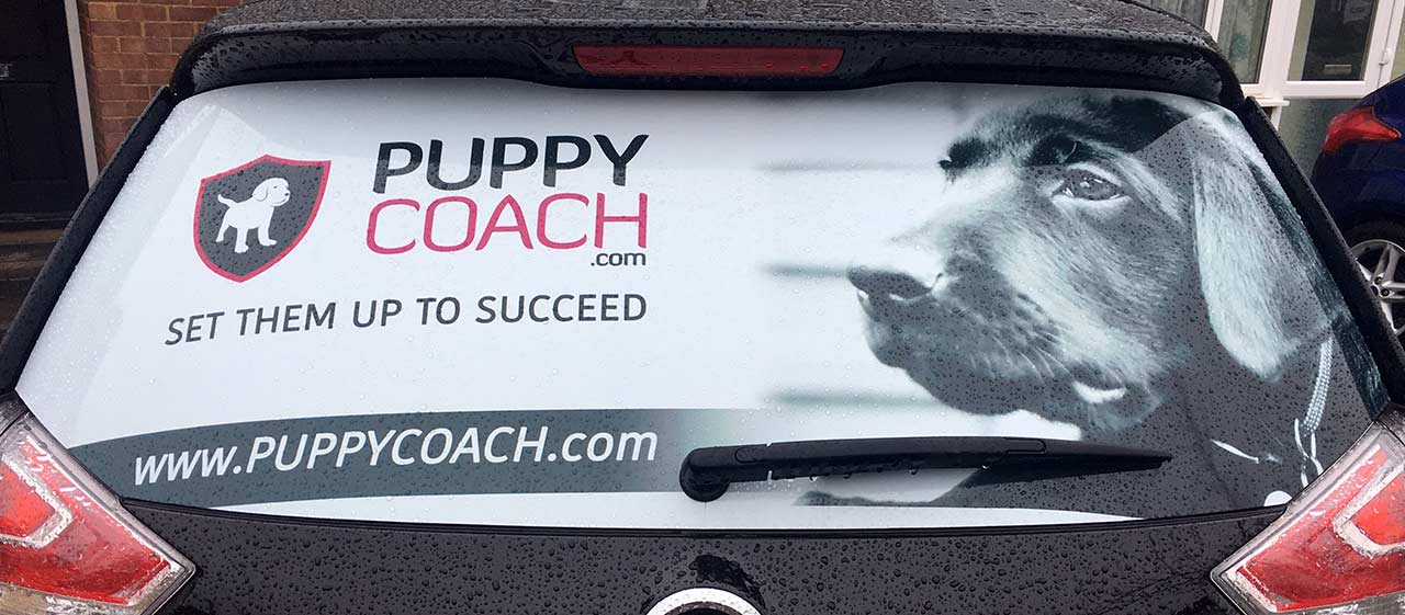 PuppyCoach.com car graphic