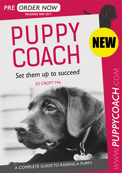 Puppy Coach - Set them up to succeed